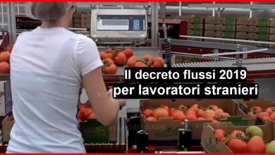 Photo of Il decreto flussi 2019 per lavoratori stranieri