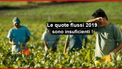 Photo of Le quote flussi 2019 sono insuficienti | Aggiornamenti & Novità