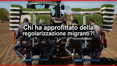 Photo of Regolarizzazione migranti: ecco chi ha approfittato della situazione